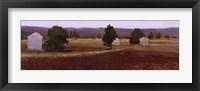 Framed Tarascon