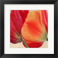 Joy III Framed Print
