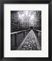 Stone Path Framed Print