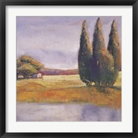 Framed Sunset Cypress