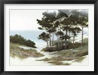 Framed Sand Hill