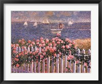 Framed Hyannis Port Roses