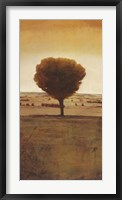 Framed Solitary Tree