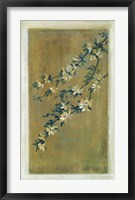 Framed Plum Blossoms II