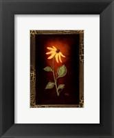 Framed Blooming Daisy