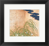 Framed Flowering Plants of Summer