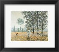 Fields in Spring Framed Print