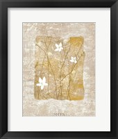 Nature's Story II Framed Print