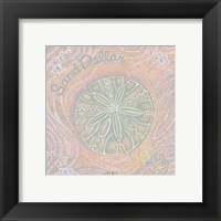 Sand Dollar Framed Print
