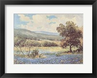 Framed Fields of Blue