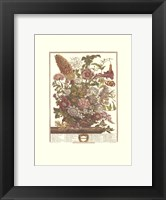 August/Twelve Months of Flowers, 1730 Framed Print