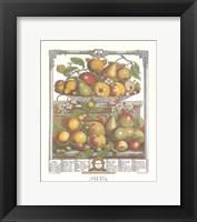 Framed March/Twelve Months of Fruits, 1732