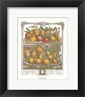 Framed April/Twelve Months of Fruits, 1732