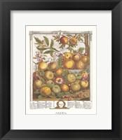 Framed May/Twelve Months of Fruits, 1732