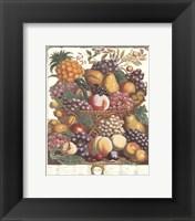 Framed October/Twelve Months of Fruits, 1732