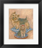 Terriers Framed Print
