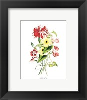 Flowers (Untitled) - Bouquet Framed Print