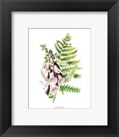 Flowers (Untitled) - Purple Bell Flowers Framed Print