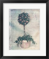 Framed Pink Topiary