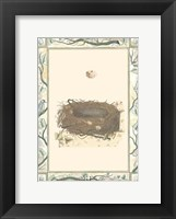 Framed Woodland Nest II