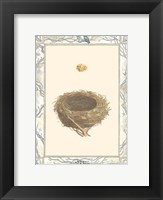 Framed Woodland Nest IV