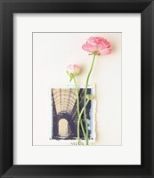 Framed Peony, Euro-Floral