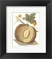Framed Melon - Sharlyn