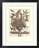 Framed January/Twelve Months of Flowers, 1730