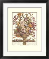 Framed September/Twelve Months of Flowers, 1730