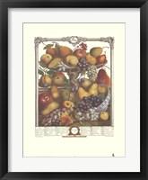 Framed November/Twelve Months of Fruits, 1732
