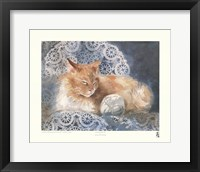 Framed Punkin the Cat
