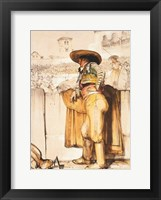 The Matador Framed Print