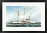 Framed Sultana