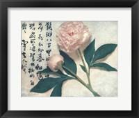 Framed Oriental Peony