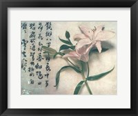 Framed Oriental Lily
