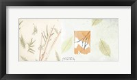 Autumn Bamboo Framed Print