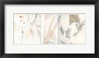 Winter Bamboo Framed Print