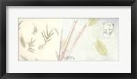 Spring Bamboo Framed Print