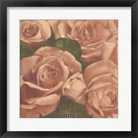 Framed Rose Cluster I