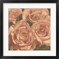 Framed Rose Cluster II