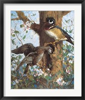 Framed Spring (Wood Ducks)