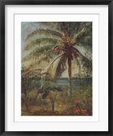 Framed Palm Tree, Nassau