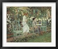 Framed Lilies