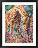 Exploring Nature Framed Print