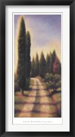 Tuscan Road I Framed Print