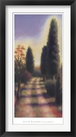 Tuscan Road II Framed Print