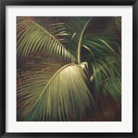 Tropical Seclusion Framed Print