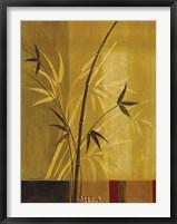 Bamboo Impressions I Framed Print