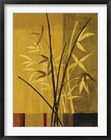 Bamboo Impressions II Framed Print
