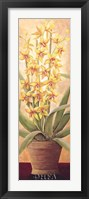 Tropical Persuasion I Framed Print